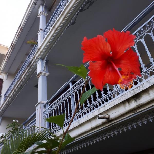 Le style colonial du bâtiment